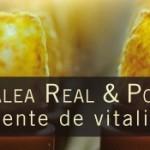 polen-y-jalea-real